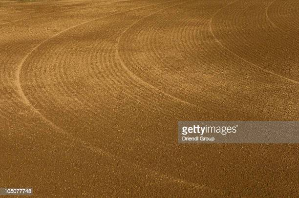 groomed dirt on a baseball infield - baseball trajectory stock photos and pictures