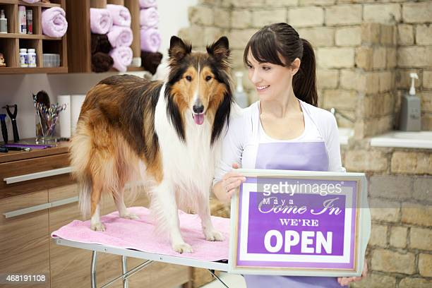 groomer with a dog - pet grooming salon stock pictures, royalty-free photos & images