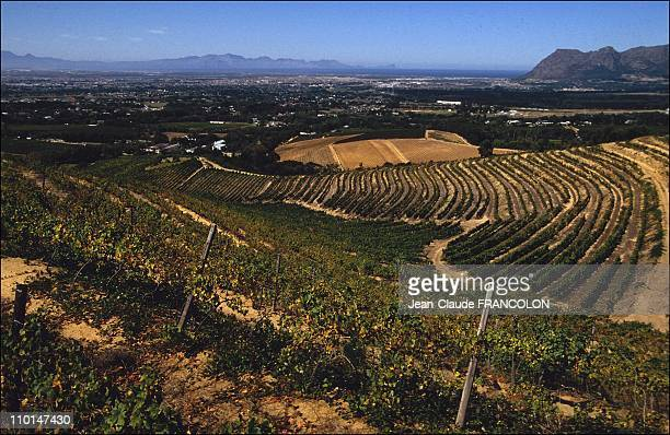Groot Constantia domain in Cape Town South Africa on March 01 1991