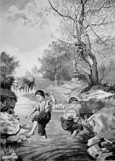 Grosses Pech Big bad luck little boy has a river cancer at the foot Germany historical image or illustration published 1890 digital improved