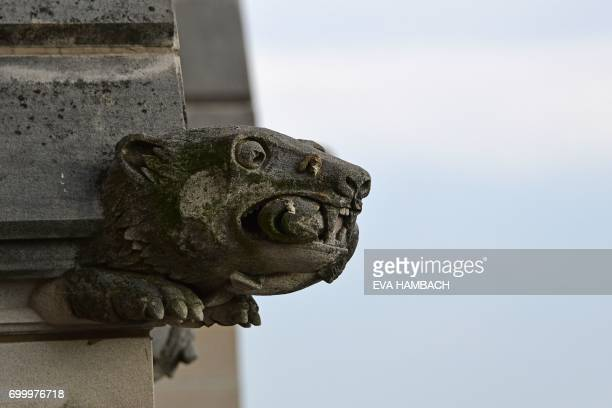 Grotesque in the shape of a polar bear with a fish in its mouth is seen atop one of the towers of the National Cathedral in Washington, DC June 20,...