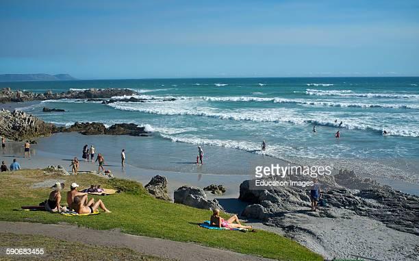 Grotto Beach near Hermanus Western Cape South Africa Fernkloof Nature Reserve