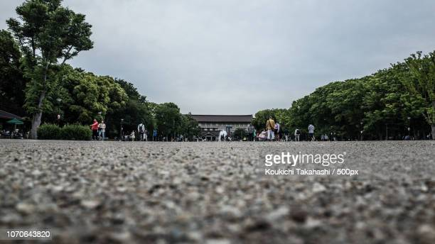 Ground - Ueno Park