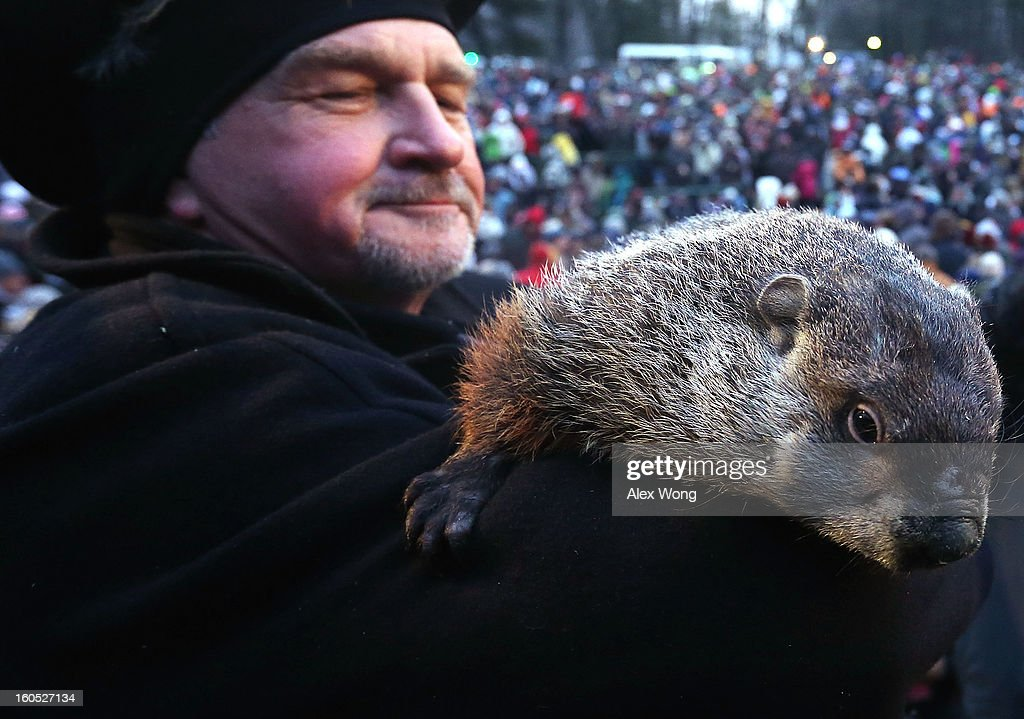 Groundhog co-handler John Griffiths holds Punxsutawney Phil after Phil did not see his shadow and predicting an early spring during the 127th Groundhog Day Celebration at Gobbler's Knob on February 2, 2013 in Punxsutawney, Pennsylvania. The Punxsutawney 'Inner Circle' claimed that there were about 35,000 people gathered at the event to watch Phil's annual forecast.