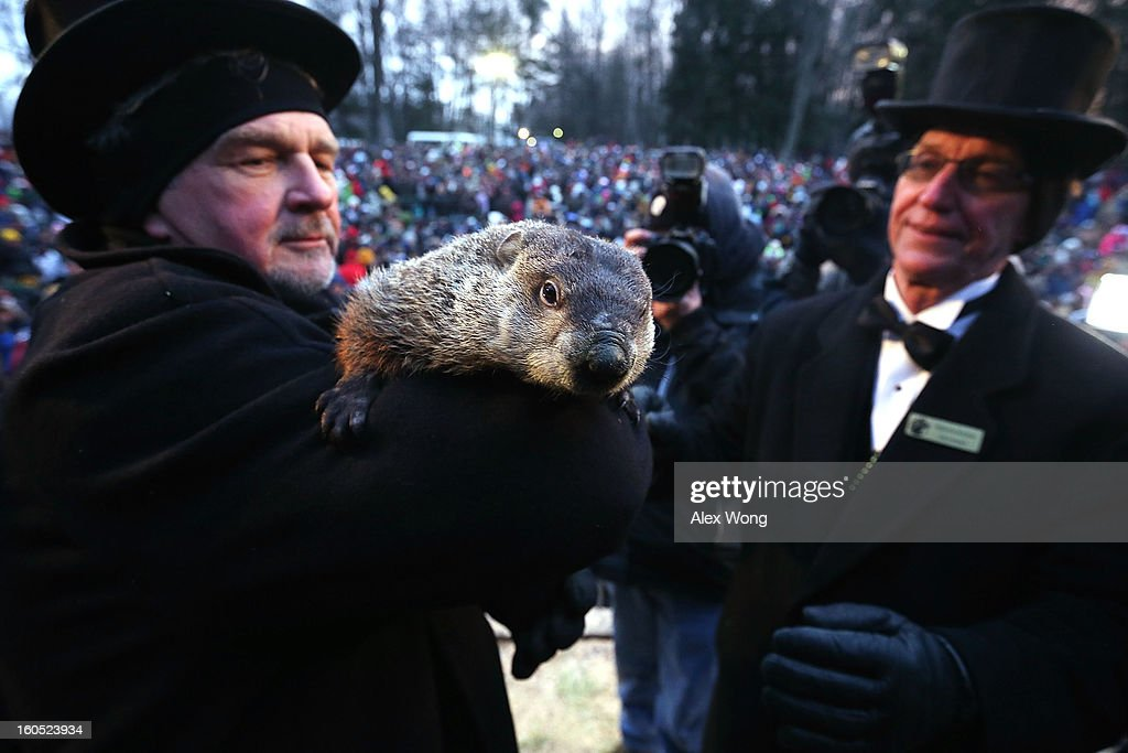 Groundhog co-handler John Griffiths (L) holds Punxsutawney Phil as co-handler Ron Ploucha (R) looks on after Phil didn't see his shadow and predicting an early spring during the 127th Groundhog Day Celebration at Gobbler's Knob on February 2, 2013 in Punxsutawney, Pennsylvania. The Punxsutawney 'Inner Circle' claimed that about 35,000 people gathered at the event to watch Phil's annual forecast.
