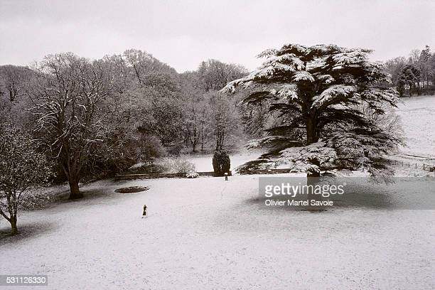 grounds of nunraw abbey under snow - monk stock pictures, royalty-free photos & images