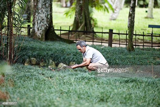 groundsman at work in rio park - ground staff stock pictures, royalty-free photos & images