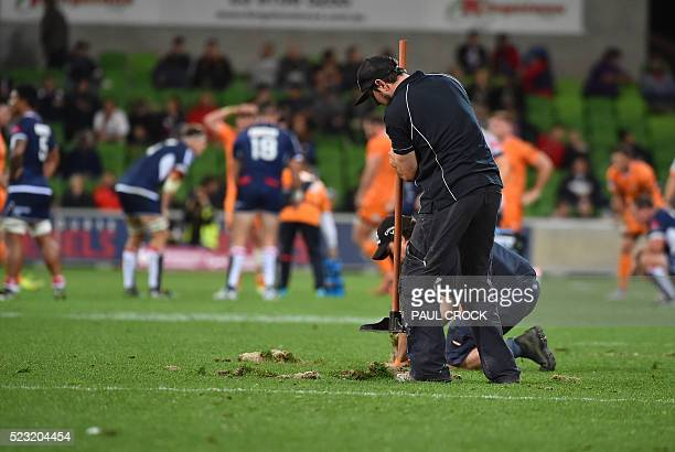 Groundstaff repair the pitch during the Super Rugby match between South Africa's Central Cheetahs and Australia's Melbourne Rebels in Melbourne on...