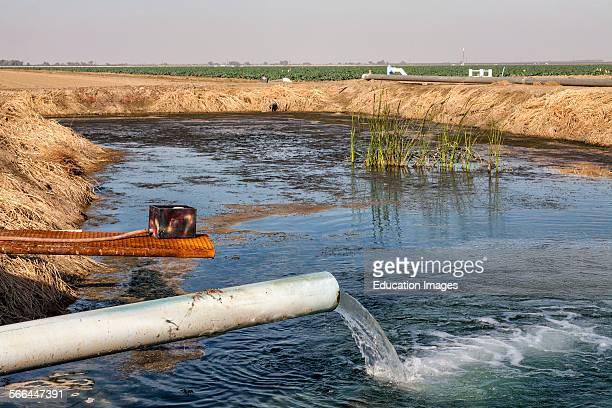 Groundwater well pumping into holding pond on Cardello Winery. Rod Cardella runs Cardella Winery, a family business since 1969, which grows almonds,...
