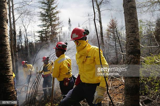A group of 300 South African firefighters work to uproot a tree as they mopup hot spots in an area close to Anzac outside of Fort McMurray Alberta on...