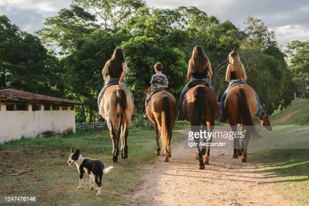 gruppo di giovani a cavallo - cavallo equino foto e immagini stock