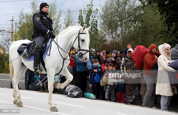 A group of about 1000 migrants is escorted by Slovenian police officers from the border crossing with Croatia on October 22 near the village Rigonce...