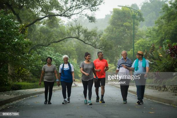 groep van actieve senioren die genieten van hun gouden jaren - wandelen lichaamsbeweging stockfoto's en -beelden