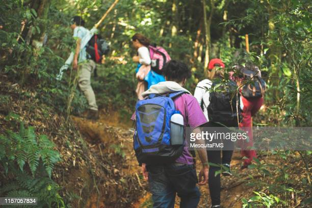 group of adventurers exploring the rainforest - tourism stock pictures, royalty-free photos & images