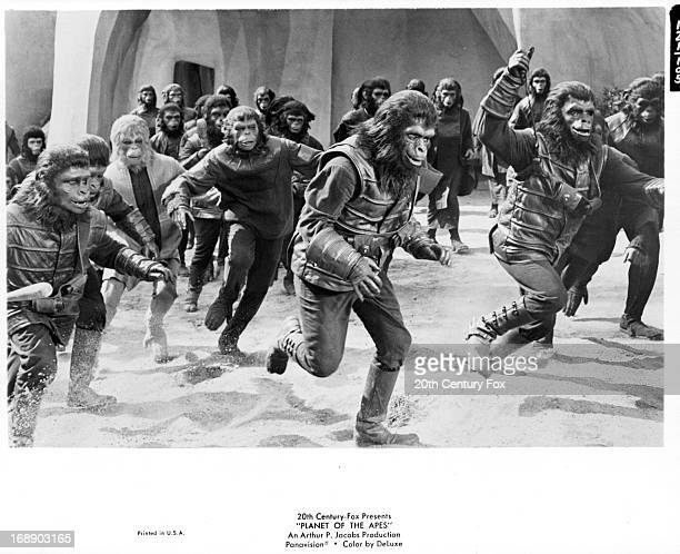 A group of apes run in a scene from the film 'Planet Of The Apes' 1968