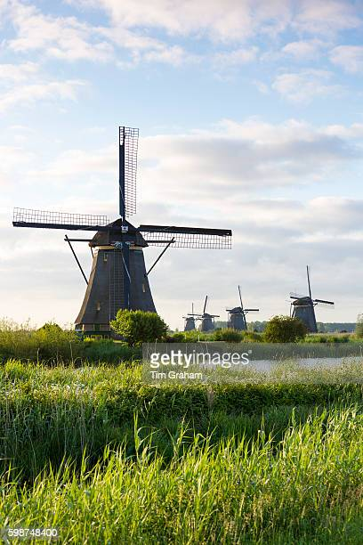 Group of authentic windmills early morning at Kinderdijk UNESCO World Heritage Site polder dyke Holland The Netherlands