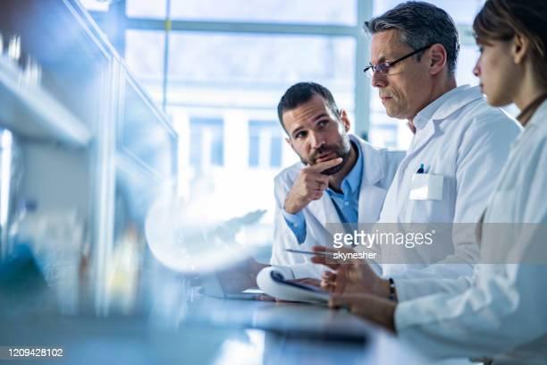 gruppo di biotecnologi che collaborano durante la lettura di dati scientifici su un computer in laboratorio. - microbiologia foto e immagini stock