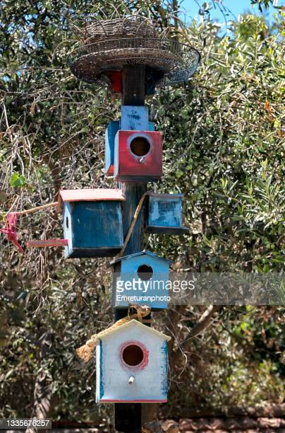 group of bird houses in the garden. - emreturanphoto stock pictures, royalty-free photos & images