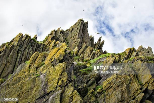 group of birds flying over mountain peak - extreme terrain stock pictures, royalty-free photos & images