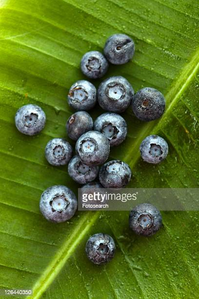 Group of blueberries on banana leaf.