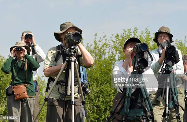 A group of British bird watchers enjoy Biebrza National Park on May 16 2008 The park which with a total of 59233 hectares is the country's largest...