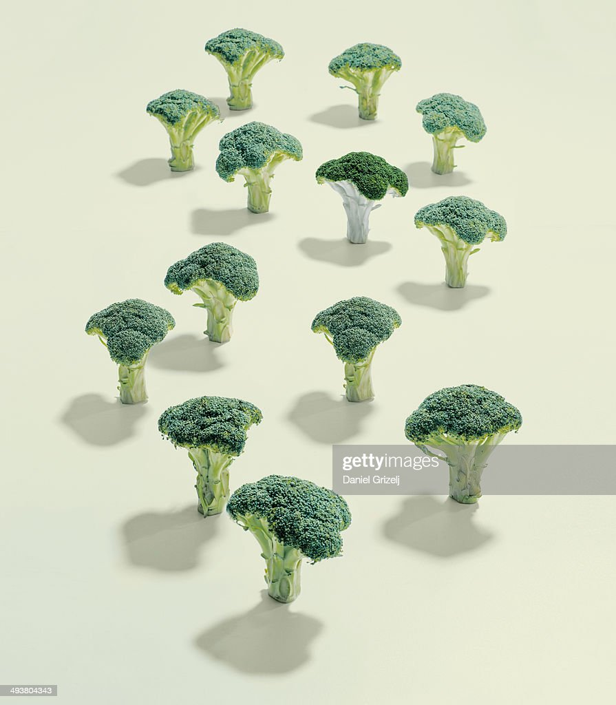 A group of broccoli : Stock Photo