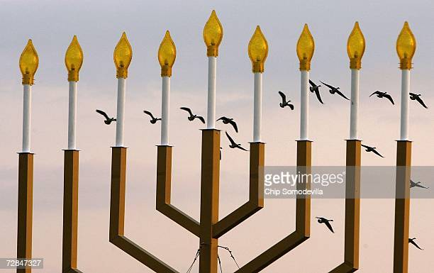 A group of Canada Geese fly past the National Menorah on the Ellipse December 18 2006 in Washington DC The temperature reached 73degrees today...