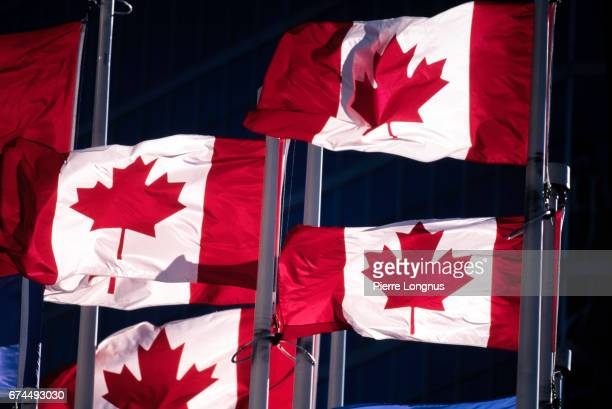 group of canadians flags - canada day stock pictures, royalty-free photos & images