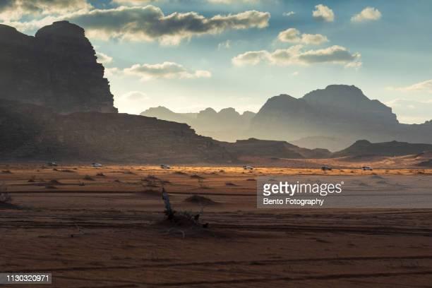 group of caravan in wadirum desert, jordan - konvoi stock-fotos und bilder
