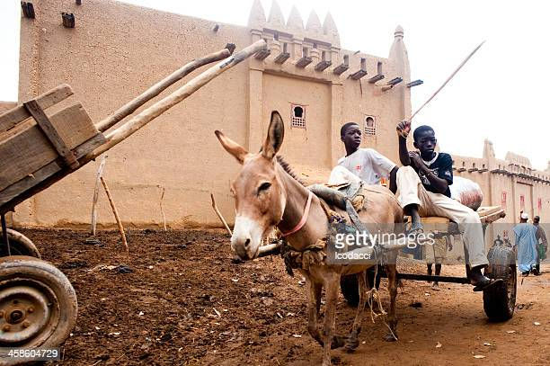 Group of children easygoing with a donkey