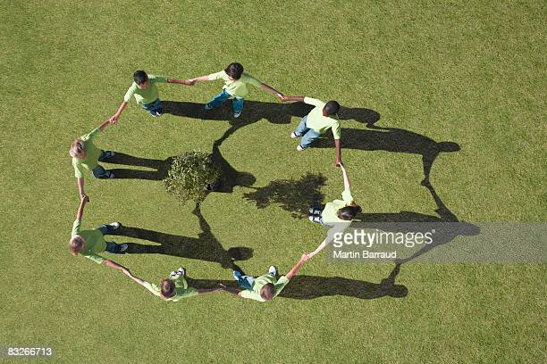 Group of children holding hands around a small tree