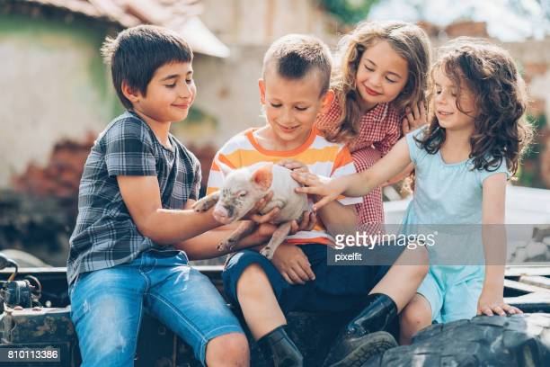 Group of children holding small piglet