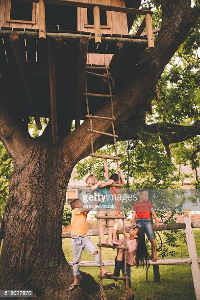 Group of children playing on the rope ladder of treehouse