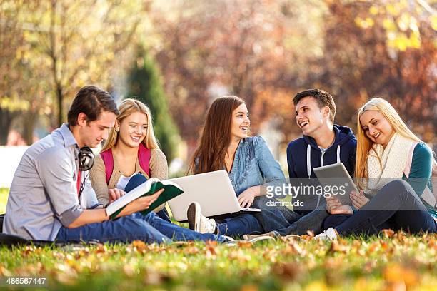 Gruppe von Studenten studieren in campus
