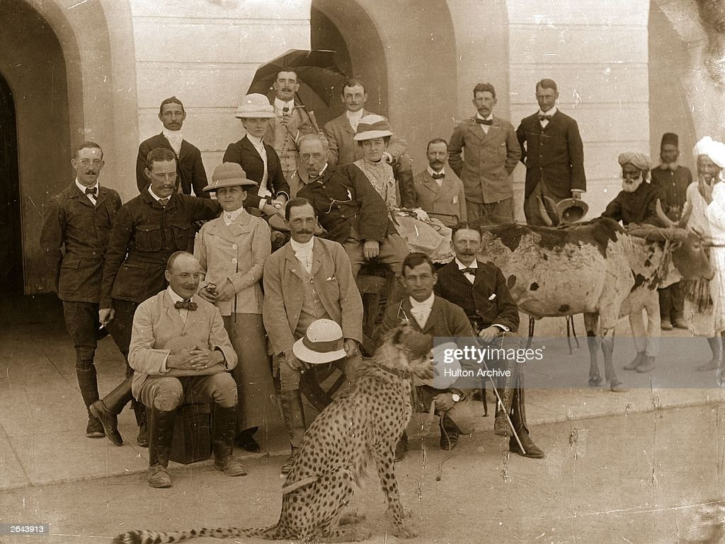 Pet Cheetah : News Photo