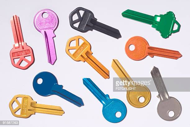 group of colored keys - large group of animals stock pictures, royalty-free photos & images