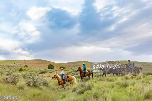 group of cowboys and cowgirls riding across a field - recreational horseback riding stock pictures, royalty-free photos & images