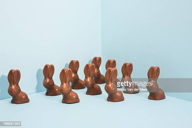group of easter bunnies. - easter stock pictures, royalty-free photos & images