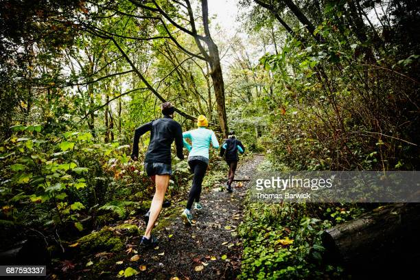 group of female friends running up forest trail - cross country running stock pictures, royalty-free photos & images