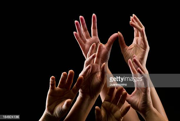Group of female hands reaching towards the sky