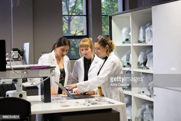 group of female scientists working on laptop in laboratory - scienziata foto e immagini stock