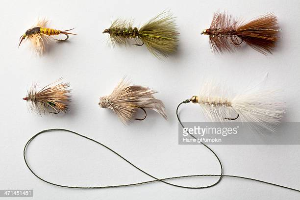 Group of Fly Fishing Flies, or Lures on white background