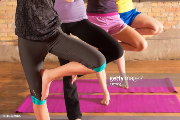 group of four young women in yoga exercise health center studio - tree position stock photos and pictures