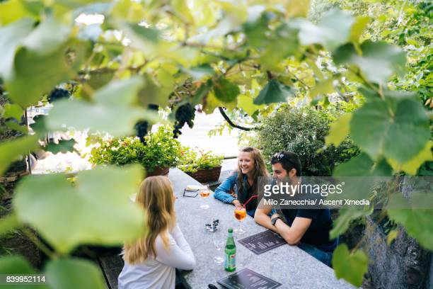 Group of friends at restaurant under grape vines