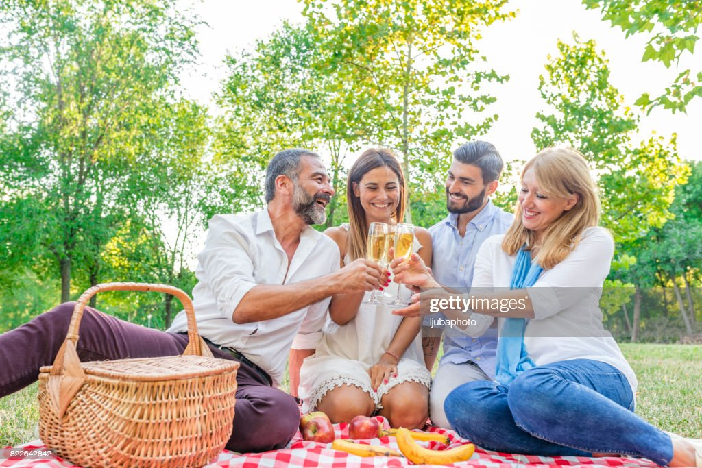 Group of friends drinking champagne : Stock Photo