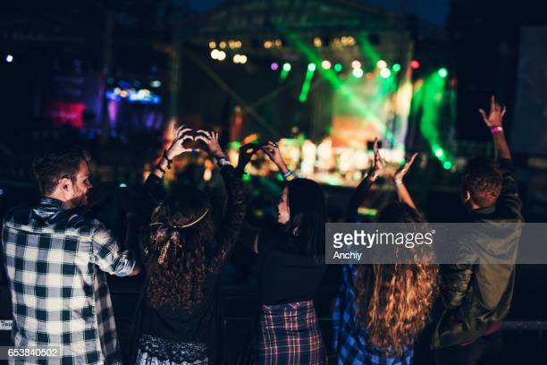Group of friends enjoying music festival. Forming heart signs with their hands. Rear view