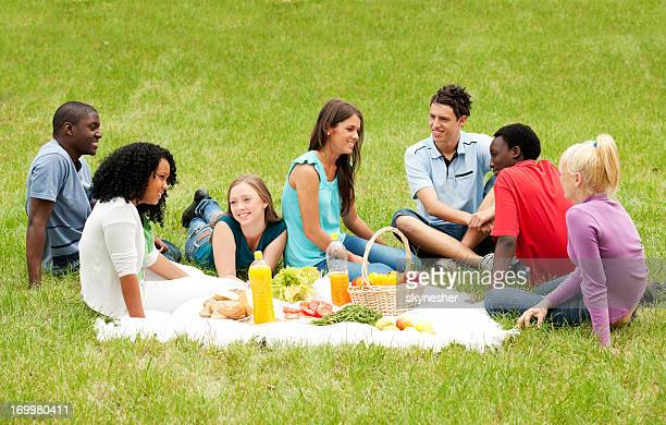 Group of friends having a picnic in park.