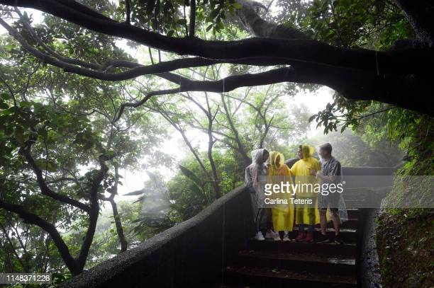 group of friends hiking in the rain - poncho stock pictures, royalty-free photos & images