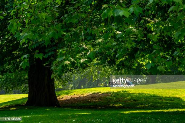 a group of friends on hampstead heath - hampstead heath stock pictures, royalty-free photos & images
