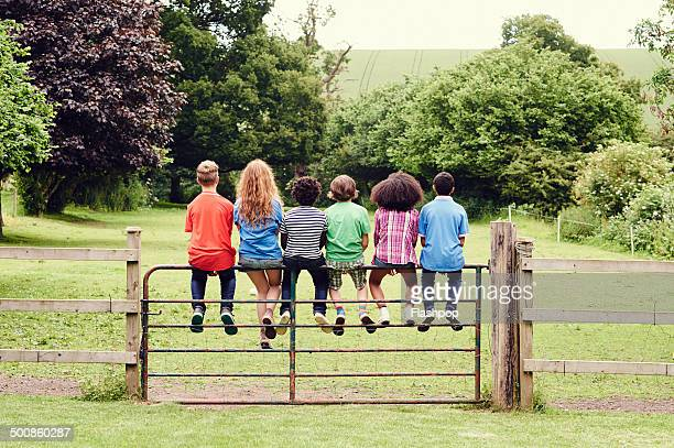Group of friends sitting on a gate in a field